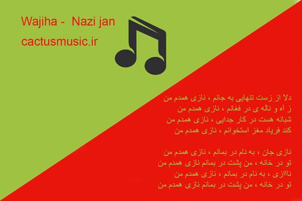 آهنگ افغانی نازی همدم من
