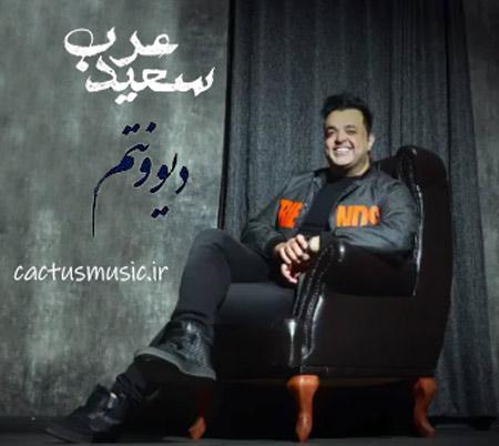 از سعید عرب - دانلود آهنگ من دیوونتم از سعید عرب
